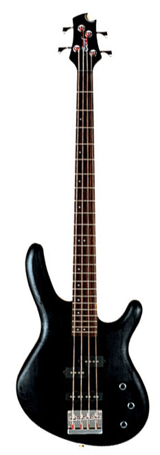 Cort Action Bass Guitar - passive ( with skysun free bag valued R250)